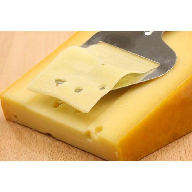 Excellent sajtszelő